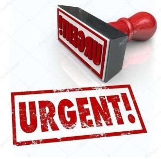 Envios urgentes Mamabepo